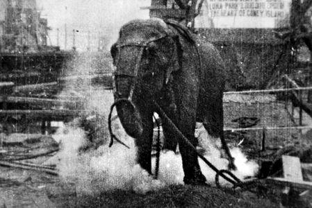 dhcdhdhnfdh-1903dh.jpg