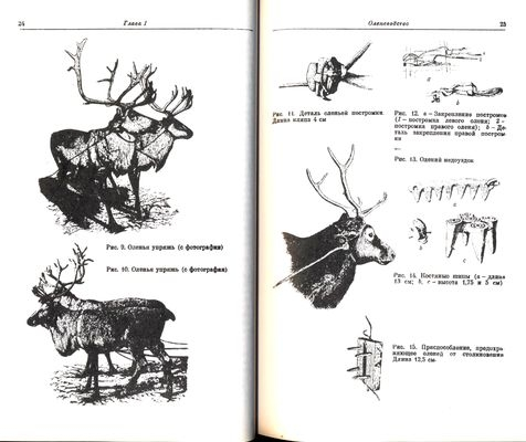 http://book.uraic.ru/blog/wp-content/gallery/owl/thumbs/thumbs_dhdhdhudhdh-001.jpg